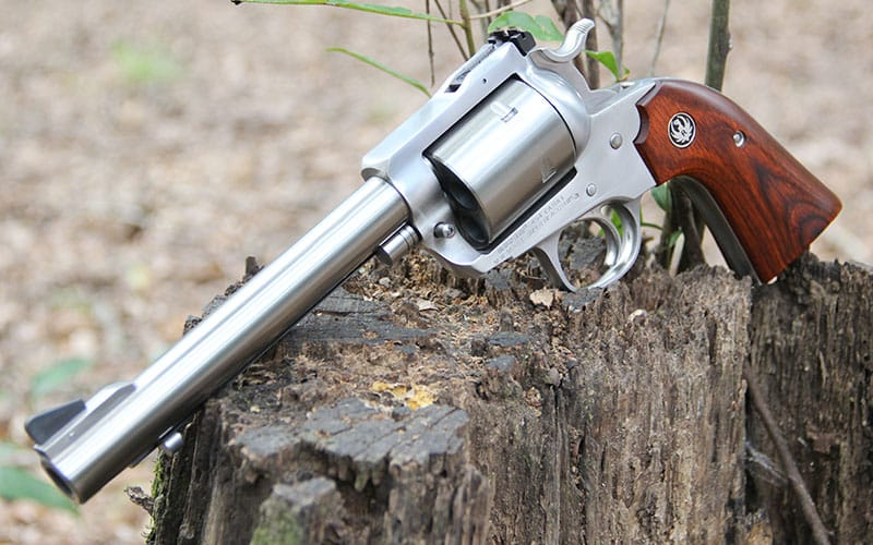 Ruger 454 Casull Stump